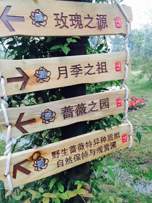 鹅湖玫瑰园可二维码扫描查看景点信息